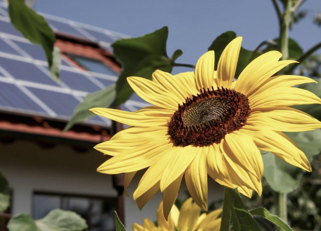 Solceller på att hustak
